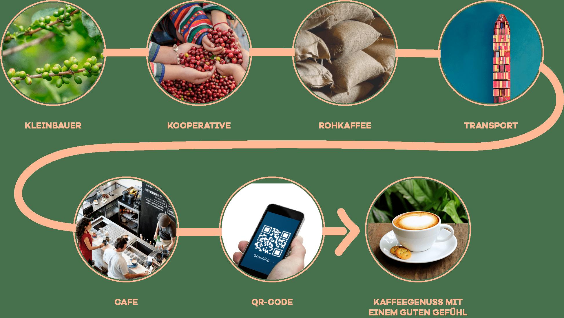 Coffee Diagram V4